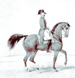 Laurent Franconi, surnommé la majesté à cheval - cheval au Cirque