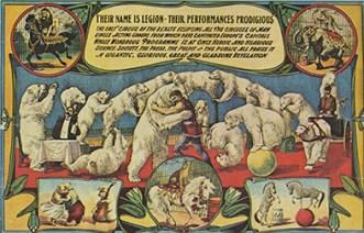 Polar bear - Circus Dictionary