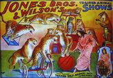Leopard : Jones - Circus Dictionary