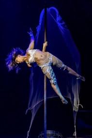 Mast acrobatic : E. Goncalves Circus Dictionary