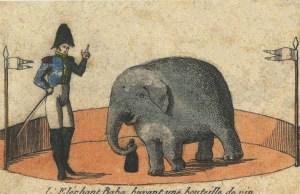 Baba chez Franconi - Eléphants