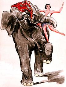 Eléphants au Cirque