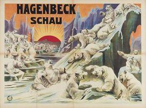 Hagenbeck - affiche des ours blancs