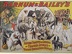 Année 1904 au Cirque