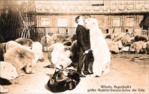 Les ours de Willhem Hagenbeck - Willy Hagenbeck