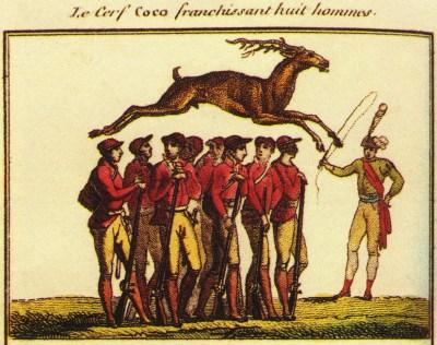 Le cerf Coco - premier Cirque Olympique