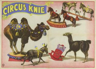 Les exotiques de Knie - quatre frères Knie