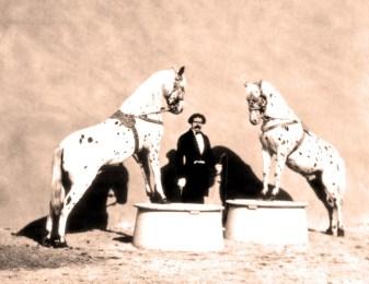 Léopold Loyal et ses chevaux