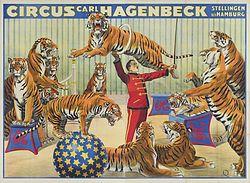 Cirque Carl Hagenbeck - affiche les fauves