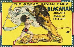 Les lions de Blacaman - affiche