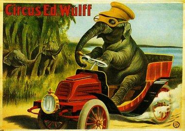 L'éléphant automobiliste de Wulff - affiche