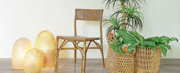 Sustainable Solutions for Your Living Spaces