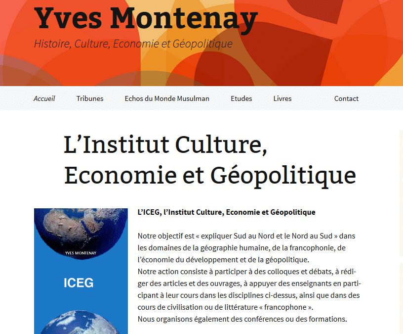Conseil d'Yves Montenay, auteur et conférencier