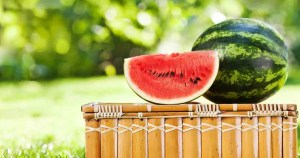 watermelon-picnic-table-fb