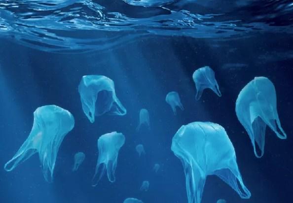 liberare gli oceani