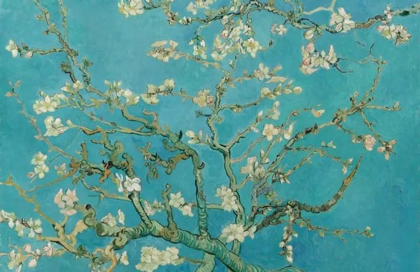 Vita di Vincent Van Gogh - Ciliegi