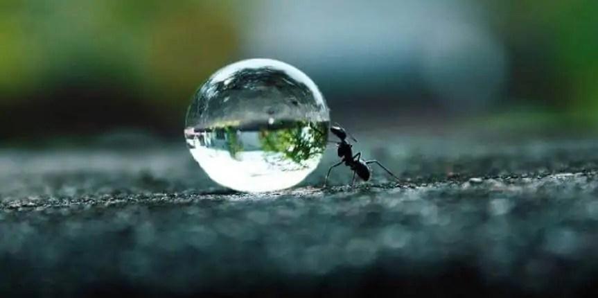 coraggio e perseveranza