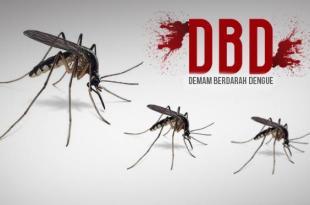 Ciri-ciri demam berdarah (dbd)