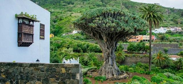 Забележителности в северната част на остров Тенерифе