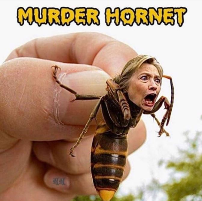 Hillary opens her big fat mouth…
