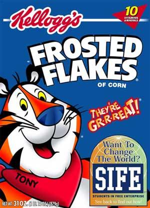 flakes2.jpg