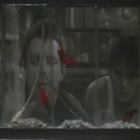 "Analyse de scène : Mickey Rourke et Matt Dillon dans ""Rusty James"""