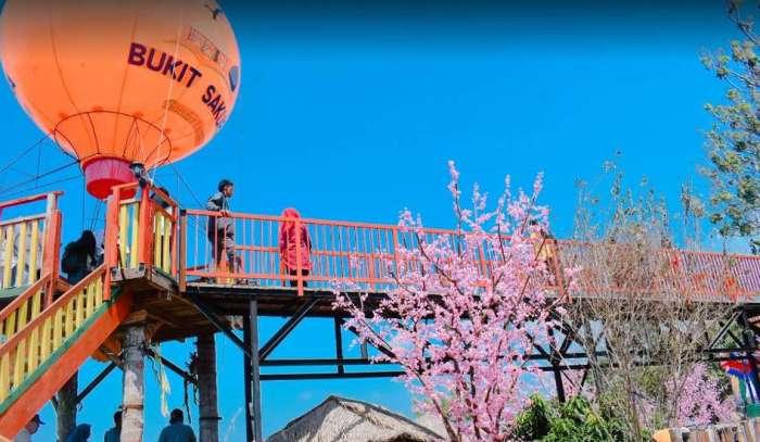 Paket Wisata Bukit Sakura Lampung