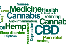 cbd terms to help you understand when you buy cbd