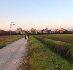 cassina_suburbio