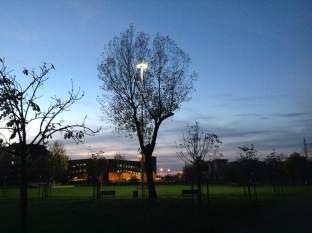 albero_missaglia_lampione