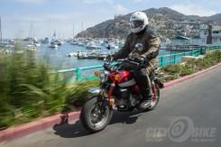 Honda Monkey on Catalina Island.