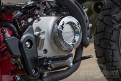 Honda Monkey engine, right side case close-up