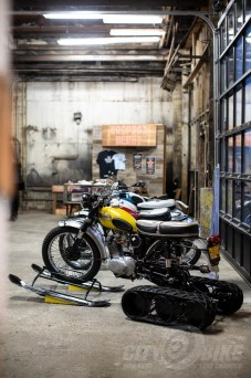 Triumphs at the 2019 One Motorcycle Show.
