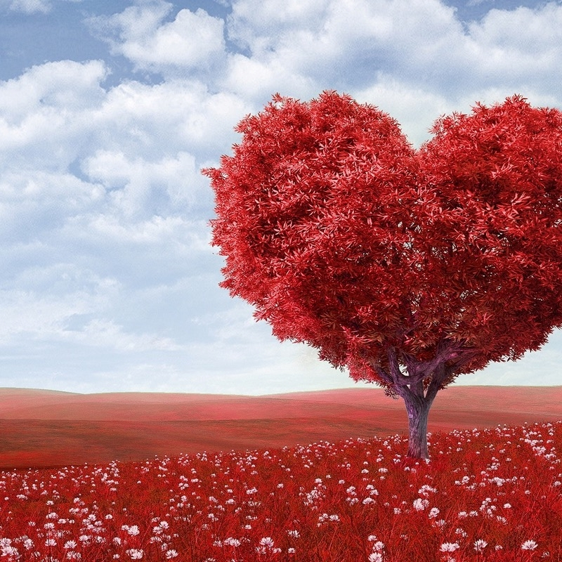 Gratitude Activities For Relationships