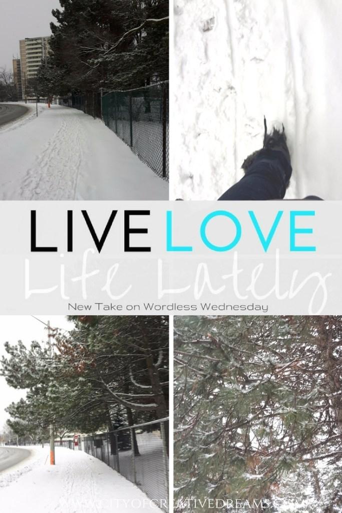LIVE LOVE LIFE LATELY - City of Creative Dreams