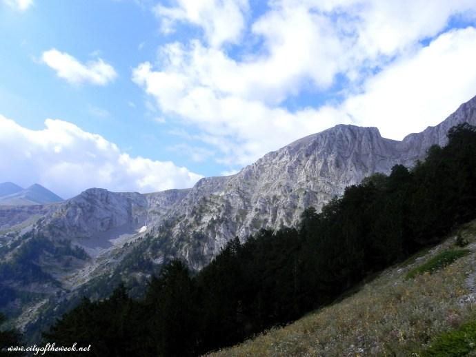 cliffs rising through the pines