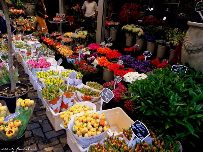 tulips- my favorites