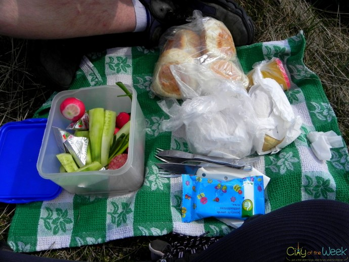 picnic gone wrong :))