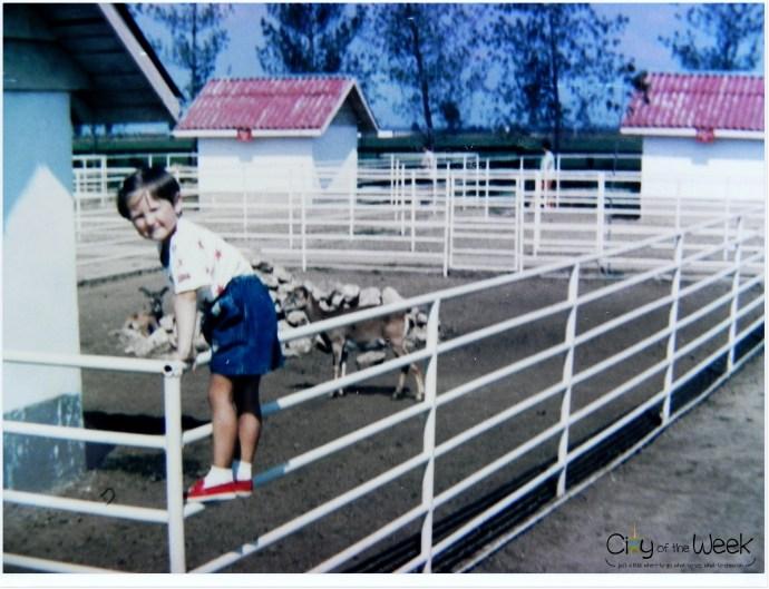 1995 Zoo near Constanta