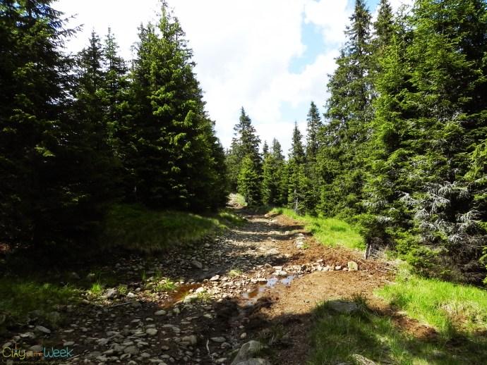 path to Szökő waterfall