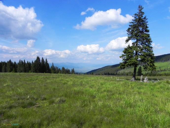 serene view- Madarasi Harghita