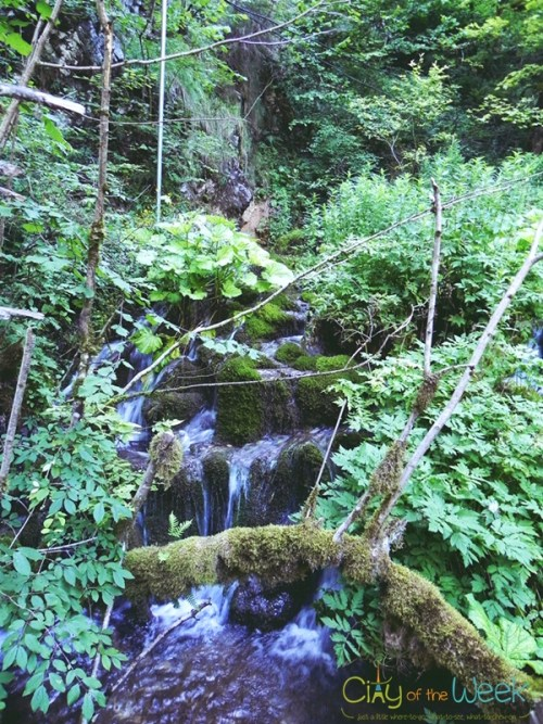 waterfalls along Ordancusa Gorge - Western Carpathians
