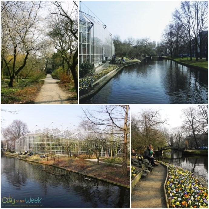 quiet and serenity at De Hortus Botanicus