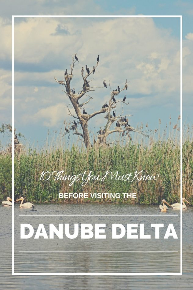 10 Things You Must Know Before Visiting the Danube Delta