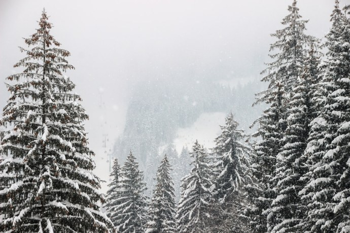 Poiana Brasov, Southern Carpathians, Romania