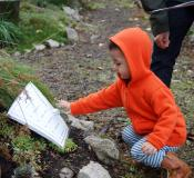 Boy exploring reading in the wild