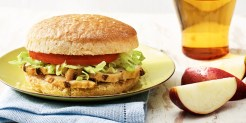 Kids Chicken Sandwich_874x440