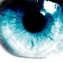 P15 Pics 37 Blue Eye
