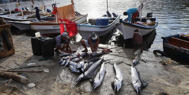 Faja Pesquera y Acuícola impulsa al sector como medio productivo nacional