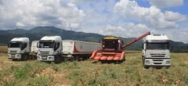 Comuna El Maizal comprometida con la producción de alimentos en el país